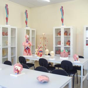 laboratorio-anatomia2